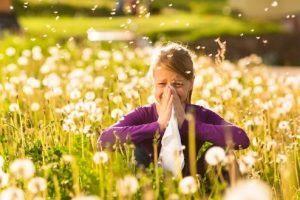 Allergieen en mesologie